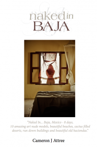 Naked In Baja eBook @ Blurb